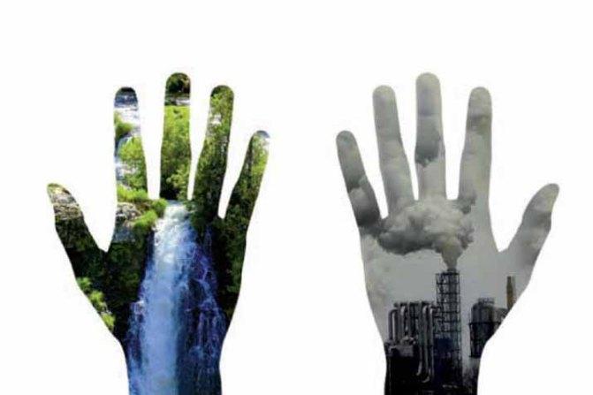 las_tres_sillas_26_enero_dia_mundial_educacion_ambiental_-1